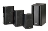 Portable PA & Concert Speakers